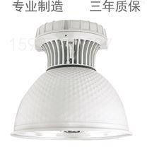 BAY51-9W防爆防腐荧光灯