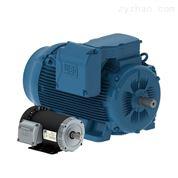 WEG万高电机 低压高压电机 WEG变频器