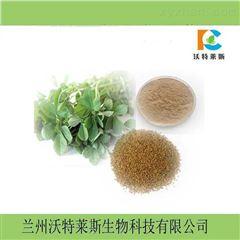 葫芦巴叶粉香苜蓿粉芸香草粉苦豆子粉提取物