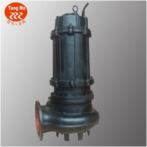 上海节能双吸式潜水排污泵