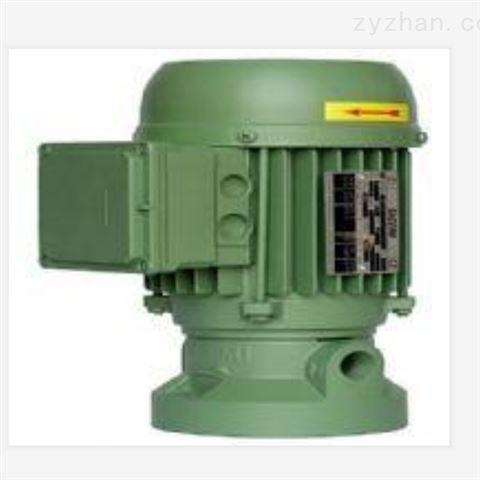 意大利SACEMI水泵、SACEMI沉浸泵
