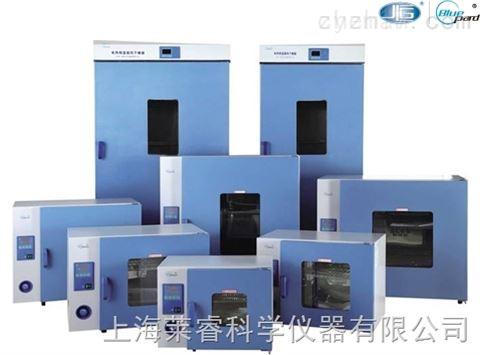 一恒鼓风干燥箱DHG-9000
