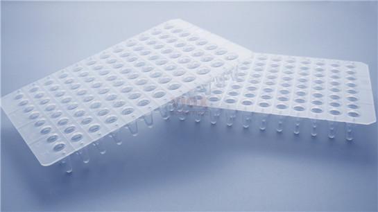 本生生物PCR板